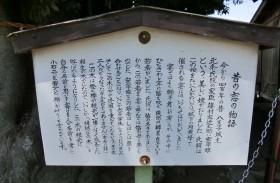 goshiboku